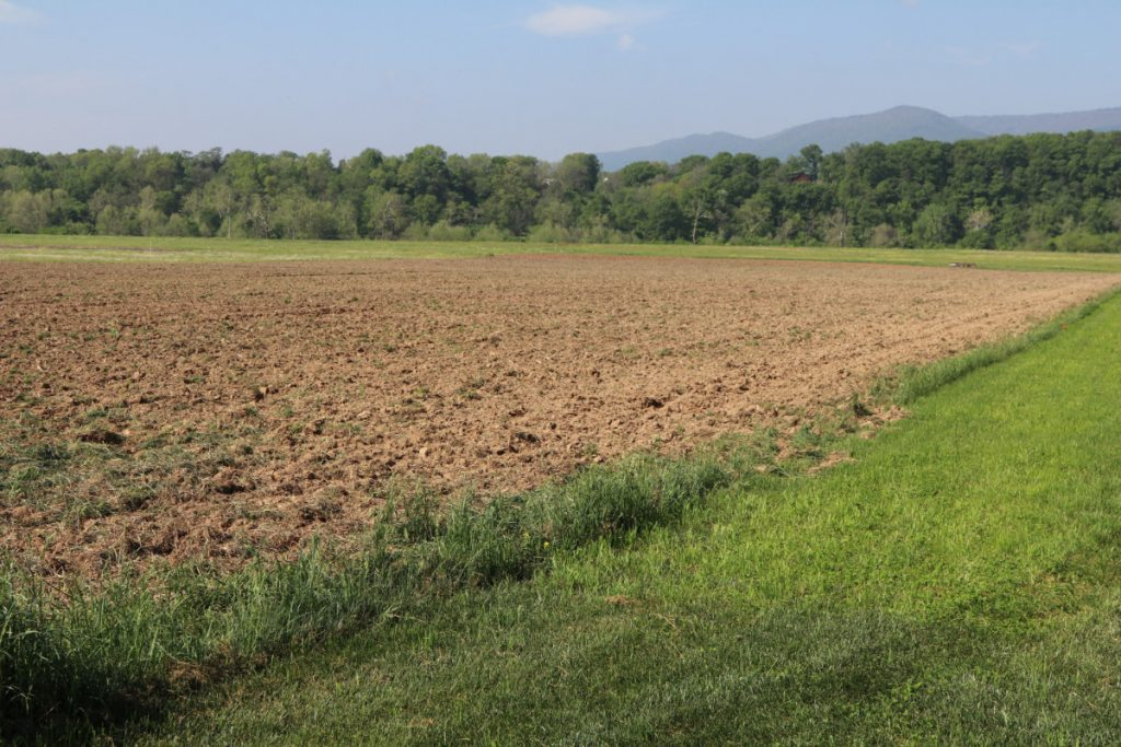 Field preparation for fall 2017 plantings
